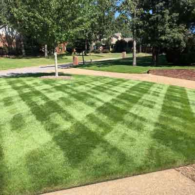 Davenport landscape management quality lawn