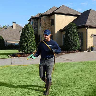 Spraying lawn for weeds