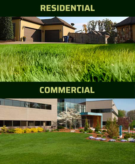 Residential and commercial lawns